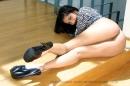 Zebra Sunny picture 24
