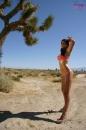 Fun In The Desert Sun picture 4