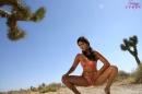 Fun In The Desert Sun picture 13